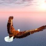 「自分で風を起こして、その風に乗れ」