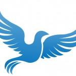 手放すと「幸せの青い鳥」に気づく